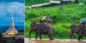 chiang-mai-vinared-tour